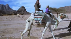 Tourist riding a camel Stock Footage