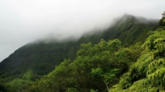 Koolau misty mountains Stock Footage