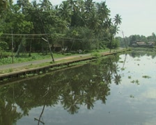 Stock Video Footage of Goa / Cochin Slow journey along a canal