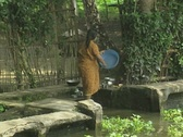 Stock Video Footage of Goa / Cochin Indian woman washes the dishes in a river / canal