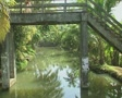 Goa / Cochin Canal trip under a wooden pedestrian bridge SD Footage