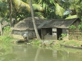Stock Video Footage of Goa / Cochin Huts on the riverbank