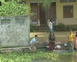 Goa / Cochin Indian women washing clothes in the canal Footage