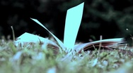 Stock Video Footage of Book in the field