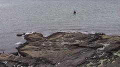 Hook Peninsula 1 Stock Footage