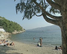 Small beach with tree Stock Footage