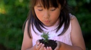 Asian Child Girl with Plant Stock Footage