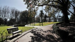 Sitting on a Park Bench, Melbourne Botanic Gardens - stock footage
