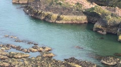Scottish Cove Stock Footage