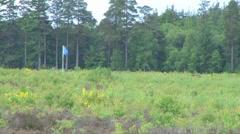 Culloden Moor Battlefield - stock footage