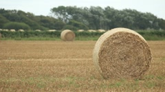 Hay Bale - stock footage