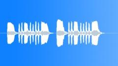 Military Bugle Quarters Call Stock Music