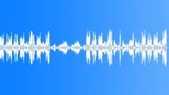 Divertimento in D Major, Menuetto II (K.334) Stock Music