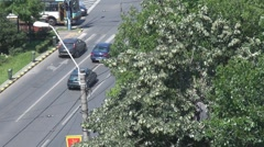 Man in a lime tree and the city Stock Footage