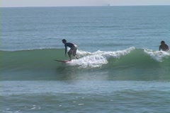 Surfing on Fish Stock Footage