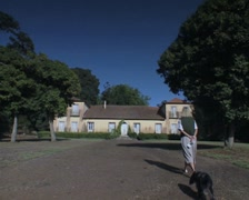 Woman and dog walking towards building Stock Footage