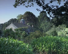 View of garden and chapel in Blandy Gardens Stock Footage