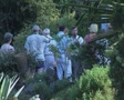People standing in garden Footage