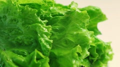 Hands puts fresh leaf of lettuce on white background - stock footage