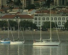 Zoom out from built-up coastal area Stock Footage
