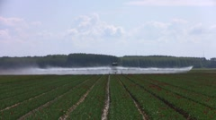 Irrigation of farmland in the countryside from the Netherlands Stock Footage