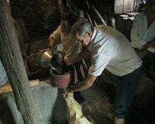 Men making wine Stock Footage