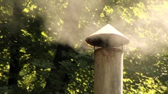 Chimney Smoke Woods Close Up - stock footage