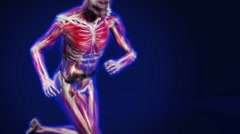 Anatomy Run FULL HD Stock Footage