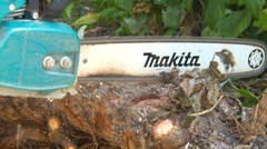 Chainsaw bucking pine log for firewood, #2 Stock Footage