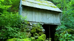 Stock Video Footage of Old abandoned watermill deep in the woods