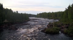 Rough river flows through the forest. Stock Footage