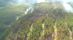 Aerial, gyro-stabilized, #26, over forest fire, prescribed burn Stock Footage