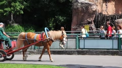 Children ride in red cart with one brown horse, behind people at Moscow Zoo Stock Footage