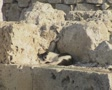 Zoom out from cat sleeping at base of Rhodes windmill Footage