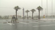 Stock Video Footage of Hurricane Winds And Torrential Rain Lash Town