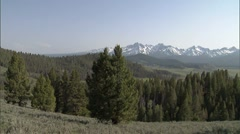 Scenic Sawtooth Mountain Meadow 2 Stock Footage