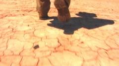 Feet Walking Across Dry and Cracked Desert (Slomo) Stock Footage