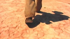 Feet Walking Across Dry and Cracked Desert - stock footage
