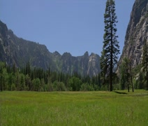 Yosemite Valley Meadow Pan - stock footage