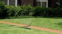 Lawn Sprinkler Stock Footage