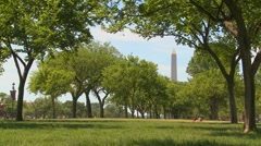 People walk on the parks and gardens in the mall in front of the Washington Stock Footage