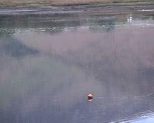 Loch Ranza Isle of Arran Scotland Stock Footage