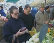 Venice Shopping in the market Footage
