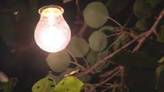 Electric Light in the Night Garden Stock Footage