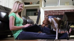Pet joins pretty owner working on laptop Stock Footage