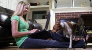 Stock Video Footage of Pet joins pretty owner working on laptop