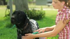 Girl washing her dog Stock Footage