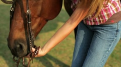 girl putting bridle on horse - stock footage