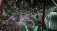 Rain Falling In Puddle Stock Footage