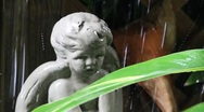Rain Angel Close up Stock Footage